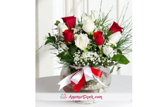 9 Kırmızı ve Beyaz Güller